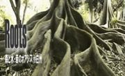 Roots 「根」