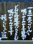 つな八☆1E−8