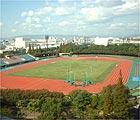 陸上競技 in 阪神地区