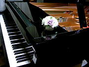 和田音楽教室