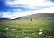 奔流中国モンゴル2005
