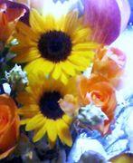 花の写真。