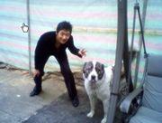 イ・テソン大好き&犬大好き