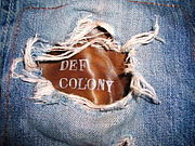 Cloud Leathers of DEF colony