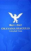 岡山シーガルズを応援しよう!