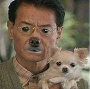 千葉♂犬ブリーダー♀
