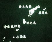 奄美諸島から甲子園へ!!