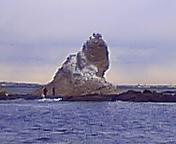 茅ヶ崎海岸を守る