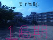 港川中学校16期生