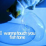 Fish Tone