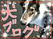 〜犬ブログ〜