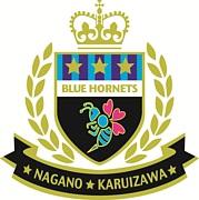 BLUE HORNETS