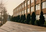 浦和西高校1987卒業 同期会