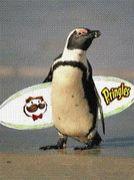 Pringles 〜波乗り人〜