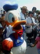 ☆ドナルドダック☆スキスキ大好き♪♪♪