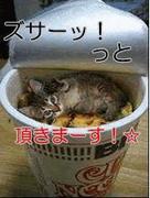 ☆食べたいくらい好き☆