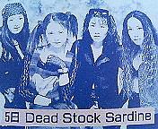 Dead Stock Sardine