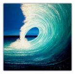 JB SURFFAMILY