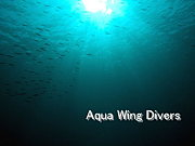 AquaWingDivers