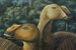 歯が800本 グリポサウルスの一種