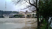 京田辺市立 桃園小学校