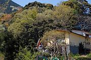 ゲストハウス 桜峰荘