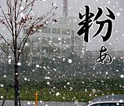 初雪が降ったら粉雪を叫ぶ