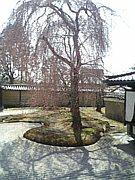 二条寮ッ子☆2007〜2008