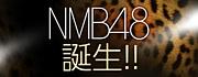 NMB48が好きなんです。。。