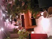 +garden