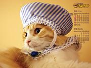 猫カフェ☆ねころび