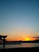 ☆富山の夜景☆