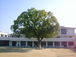 kyoto衣笠小学校