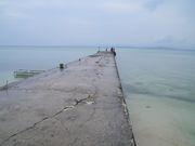 西桟橋の集い(小浜荘)