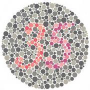 色盲・色弱だけに分かる世界