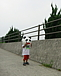 神戸マラソン ド素人の挑戦