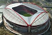 Stadium Mania