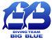 BIG BLUE DIVING TEAM