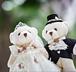 もうすぐ結婚する人集まれ〜✨🎊