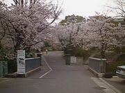 横須賀市立鴨居小学校76年生まれ