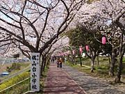 堺市立桃山台小学校