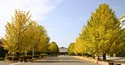 久留米高専専攻科(2010年度卒)