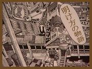 猫祭り姫/燈