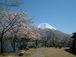 日本観光情報<日本の旅と温泉>