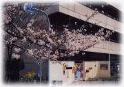 山田第三幼稚園