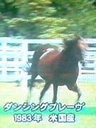 鬼脚・追い込み馬【⇒→→→追】