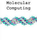 分子コンピューティング