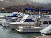 小型船舶操縦免許