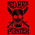 *〜赤髪海賊団〜*