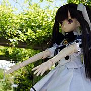 LILIA/Black&White Raven